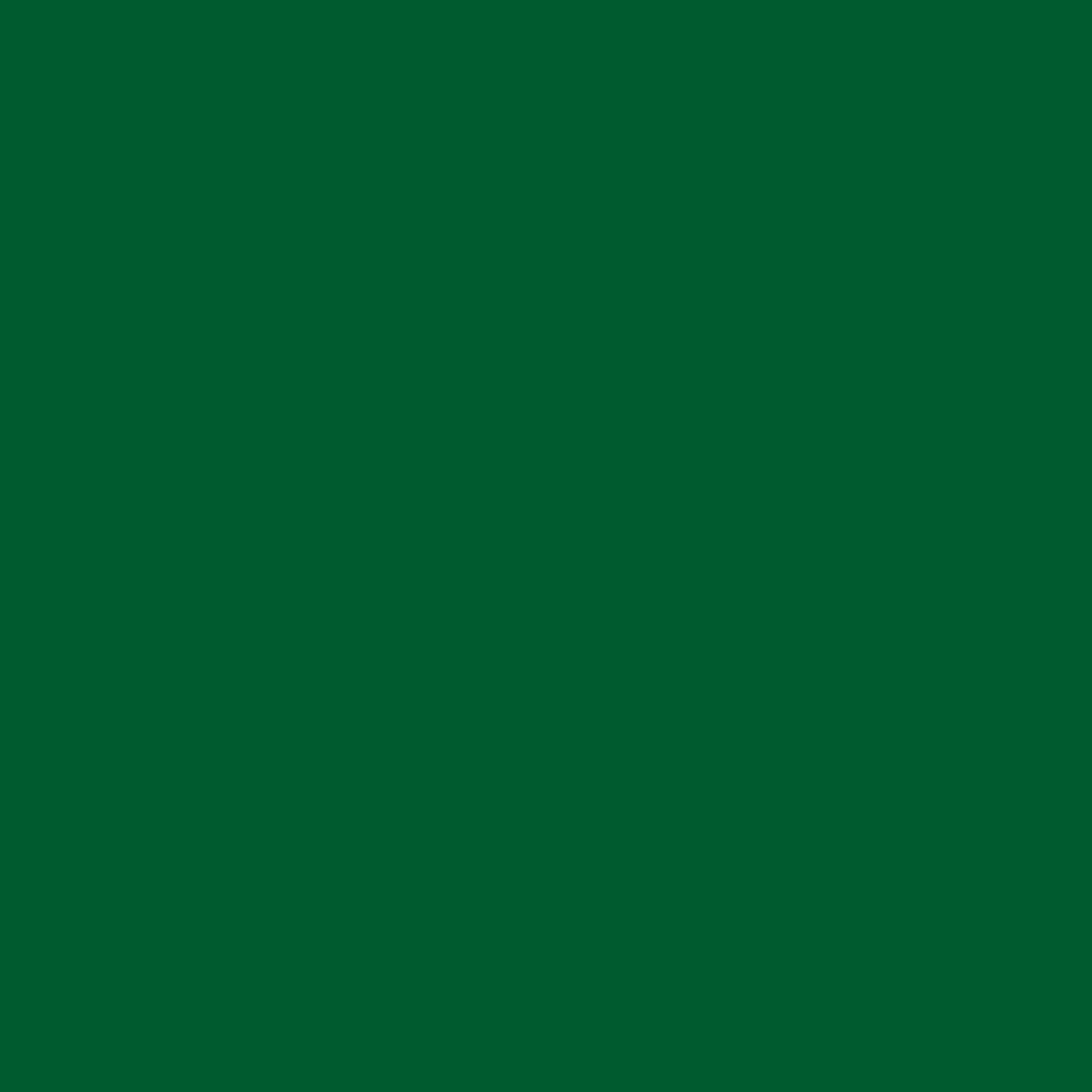 AMAZONIA GREEN