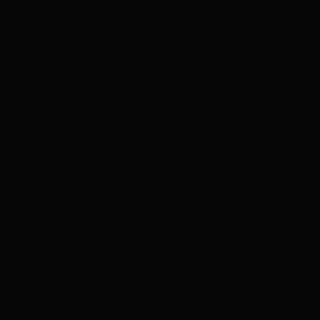 BLACK OUTLINES